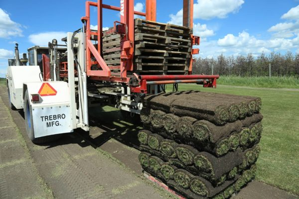 SOD Machine