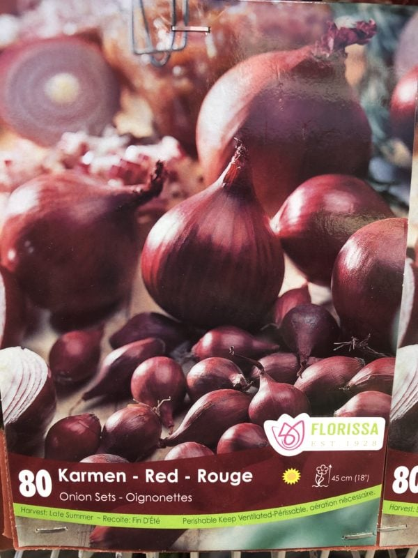 onion-sets-karmen-red-bulb-florissa