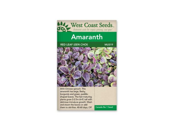 amaranth-red-leaf-een-choi-west-coast-seeds