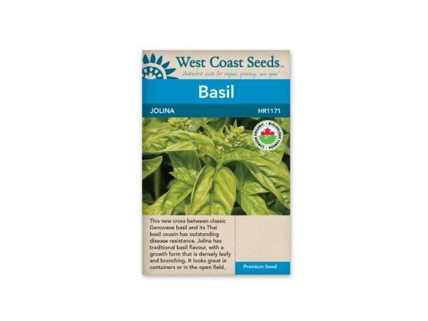 basil-jolina-west-coast-seeds