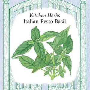 basil-kitchen-herbs-italian-pesto-renees-garden