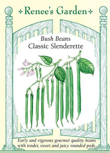 bean-bush-beans-classic-slenderette-renees-garden