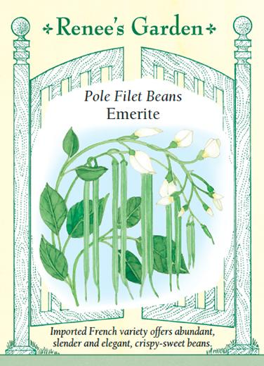 bean-pole-filet-beans-emerite-renees-garden