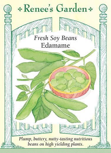 bean-soy-beans-edamame-renees-garden