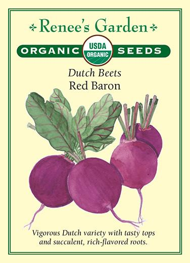 beet-dutch-beets-red-baron-organic-renees-garden