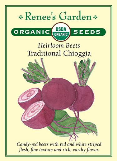 beet-heirloom-beets-traditional-chioggia-organic-renees-garden