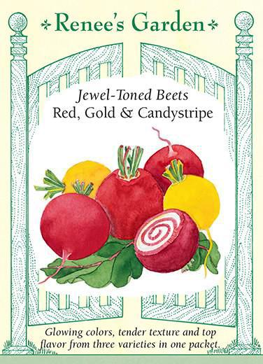 beet-jewel-toned-beets-renees-garden