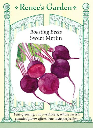 beet-roasting-beets-sweet-merlin-renees-garden