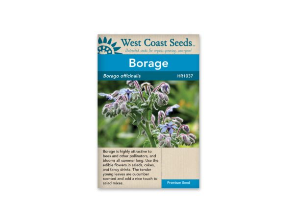 borage-borago-officinalis-west-coast-seeds