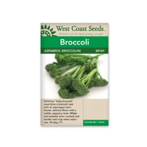 broccoli-aspabroc-broccolini-west-coast-seeds