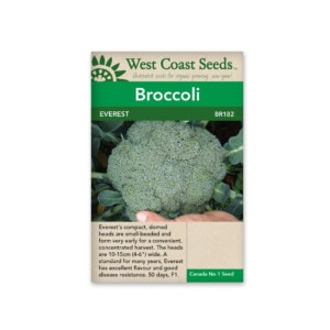 broccoli-everest-west-coast-seeds