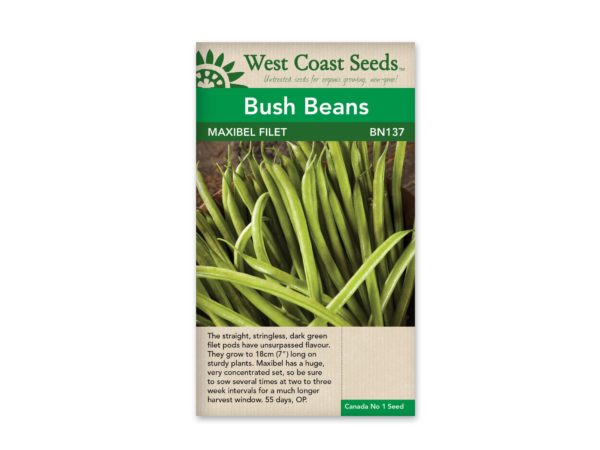 bush-beans-maxibel-filet-west-coast-seeds