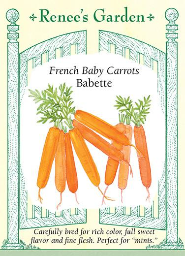 carrot-french-baby-carrots-babette-renees-garden