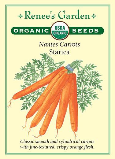 carrot-nantes-carrots-starica-organic-renees-garden