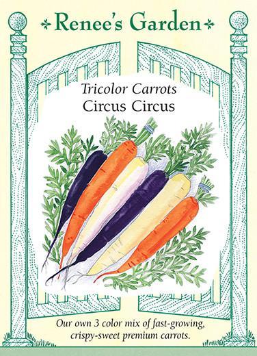 carrot-tricolor-carrots-circus-circus-renees-garden