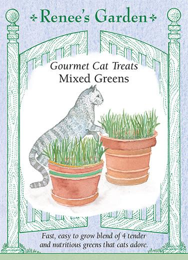 cat-grass-gourmet-treats-mixed-green-renees-garden