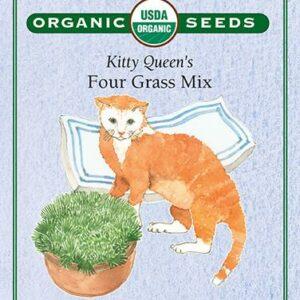 cat-grass-kitty-queens-four-grass-mix-renees-garden