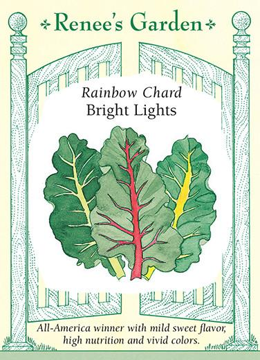 chard-rainbow-bright-lights-renees-garden