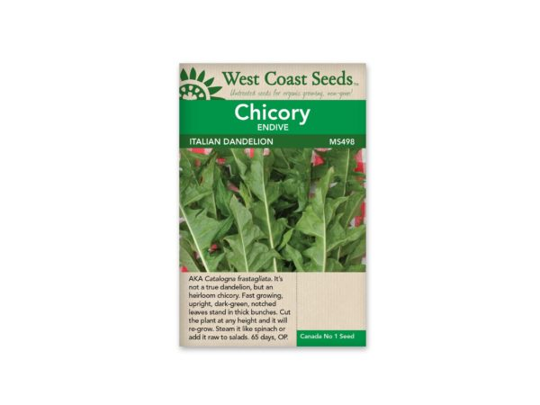 chicory-italian-dandelion-west-coast-seeds