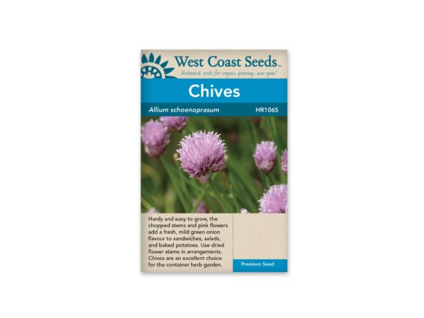 chives-allium-schoenoprasum-west-coast-seeds