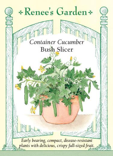 cucumber-container-bush-slicer-renees-garden