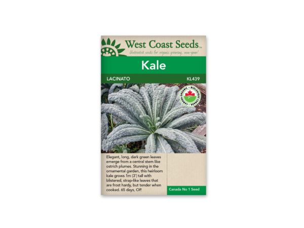 kale-lacinato-west-coast-seeds
