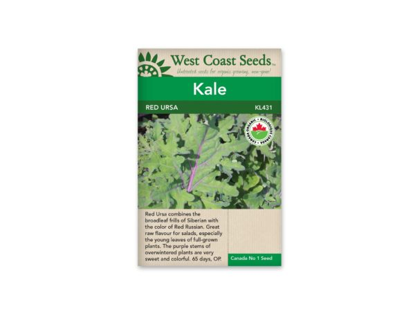 kale-red-ursa-west-coast-seeds