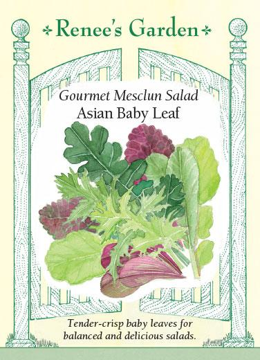 lettuce-asian-baby-leaf-mix-renees-garden