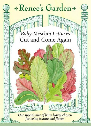 lettuce-baby-mesclun-lettuces-cut-and-come-again-renees-garden