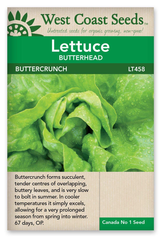 lettuce-butterhead-buttercrunch-west-coast-seeds