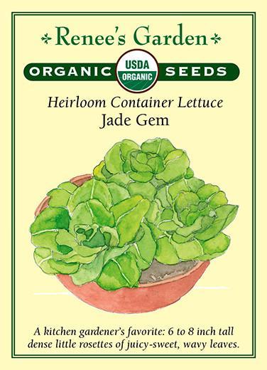 lettuce-heirloom-container-lettuce-jade-gem-organic-renees-garden