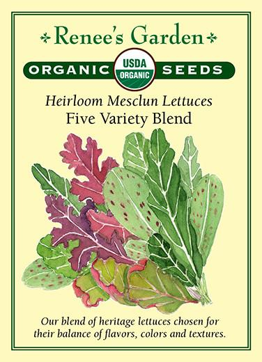 lettuce-heirloom-mesclun-lettuces-five-variety-blend-organic-renees-garden