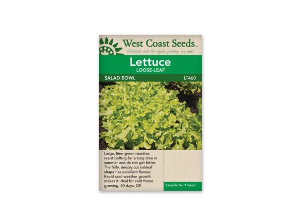 lettuce-loose-leaf-salad-bowl-west-coast-seeds