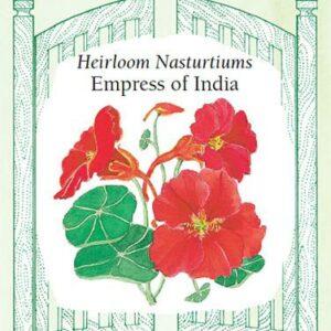 nasturtium-heirloom-nasturtiums-empress-of-india-renees-garden