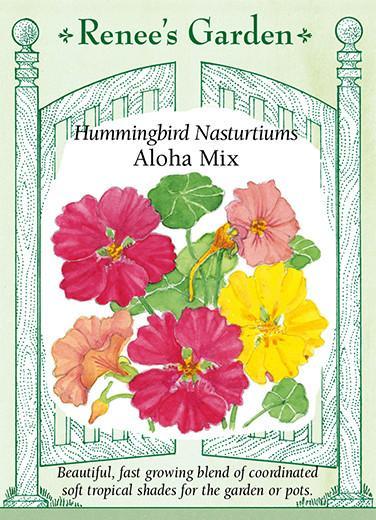 nasturtium-hummingbird-nasturtiums-aloha-mix-renees-garden