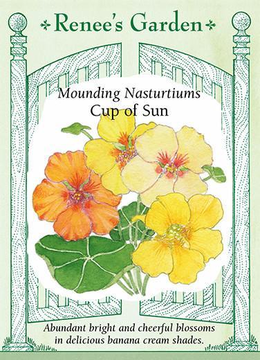 nasturtium-mounding-nasturtiums-cup-of-sun-renees-garden