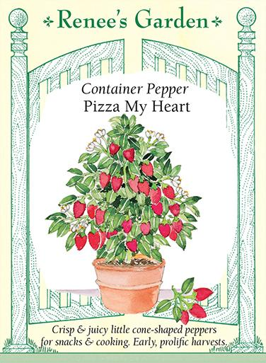 pepper-container-pepper-pizza-my-heart-renees-garden