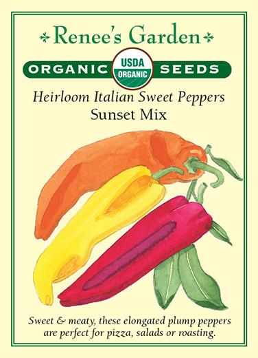 pepper-heirloom-italian-sweet-peppers-organic-renees-garden