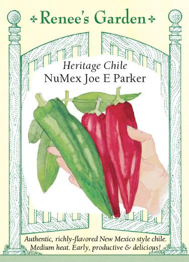 pepper-heritage-chile-numex-joe-e-parker-renees-garden