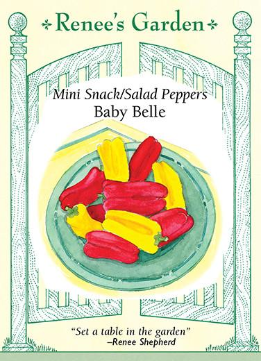 pepper-mini-snack-salad-peppers-baby-belle-renees-garden