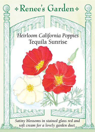 poppy-heirloom-california-poppies-tequila-sunrise-renees-garden