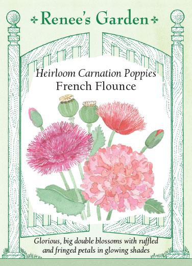 poppy-heirloom-carnation-poppies-french-flounce-renees-garden