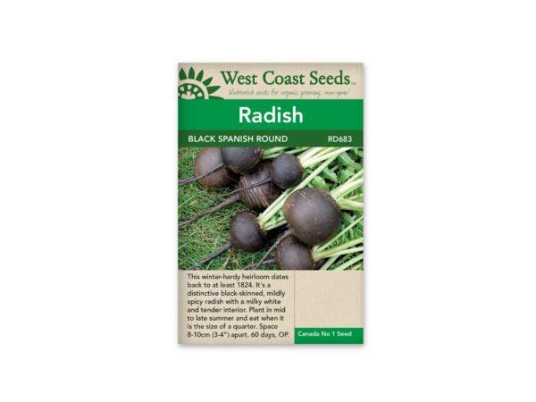 radish-black-spanish-round-west-coast-seeds