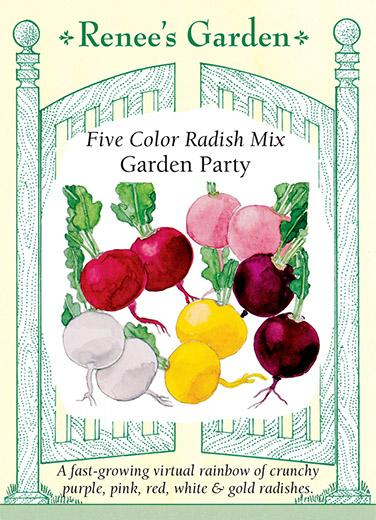 radish-five-color-rashished-mix-garden-party-renees-garden