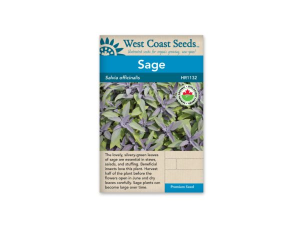 sage-salvia-officinalis-west-coast-seeds
