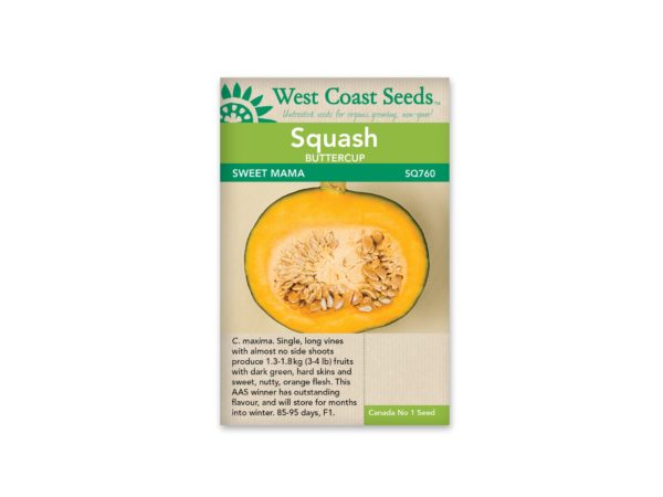 squash-buttercup-sweet-mama-west-coast-seeds