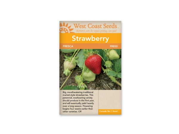 strawberry-fresca-west-coast-seeds