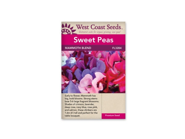 sweet-peas-mammoth-blend-west-coast-seeds