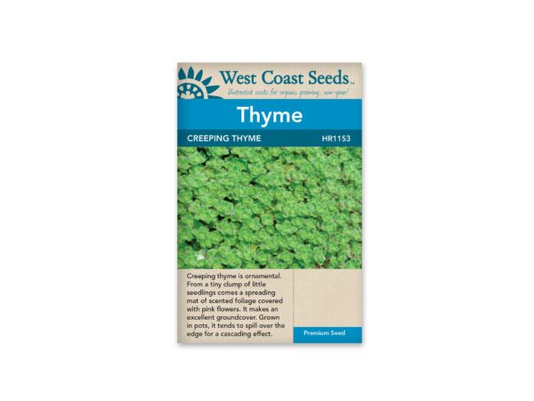 thyme-creeping-thyme-west-coast-seeds