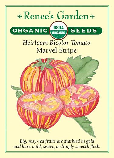 tomato-heirloom-bicolor-tomato-marvel-stripe-renees-garden